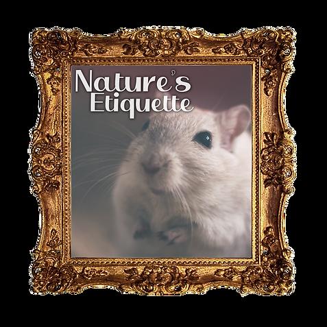 24 Nature's Etiquette.png