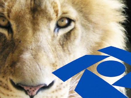 Rendimentos do exterior estão sujeitos ao carnê-leão