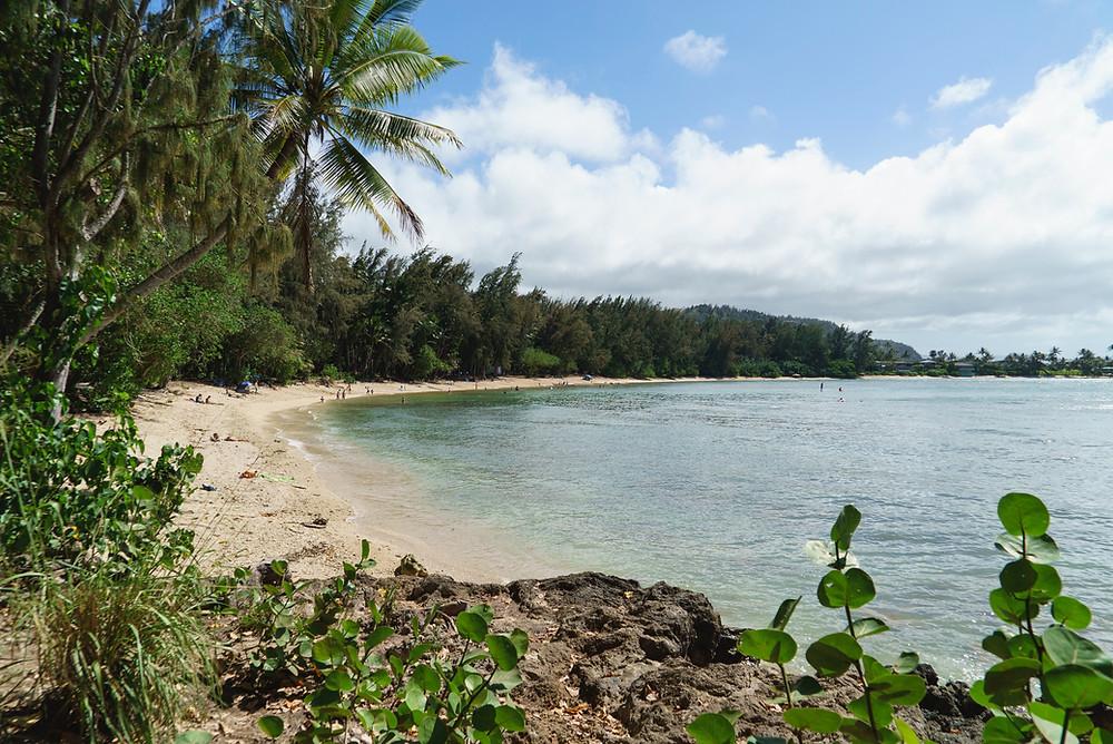 Kawela Bayの全景。人が少なく、ハイウエイから離れていてとても静かなビーチ(Photo/Tomohito Ishimaru)