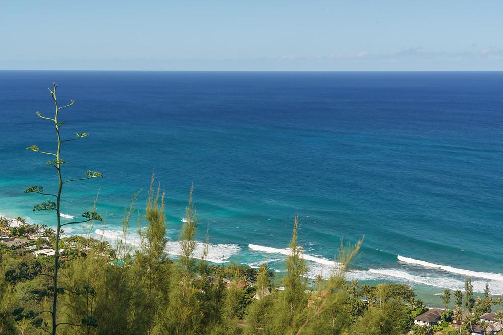 やっぱりノースの海は綺麗。この時期(1月)はノースショアの海は波が高いので白波がくっきり(PHOTO/Tomohito Ishimaru)