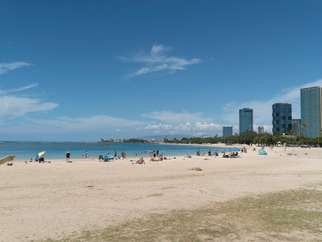 旅行者こそ参加すべき! Honolulu Umisakuraのビーチクリーンアップに参加してきたよ〜