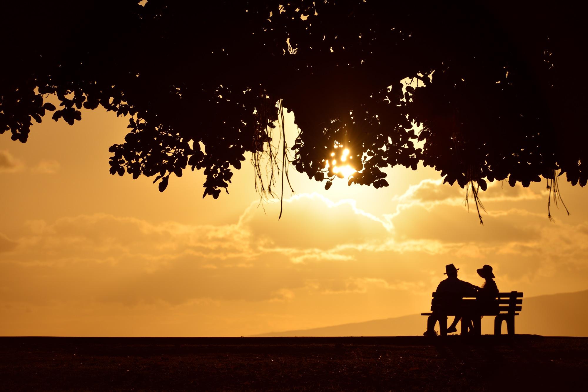 アラモアナパーク夕陽6.jpg