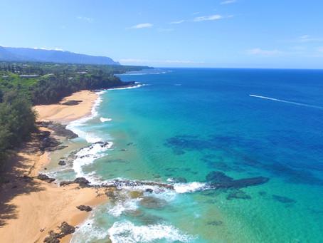 ログキャビンビーチ 〜Hawaii:A Bird's eye〜