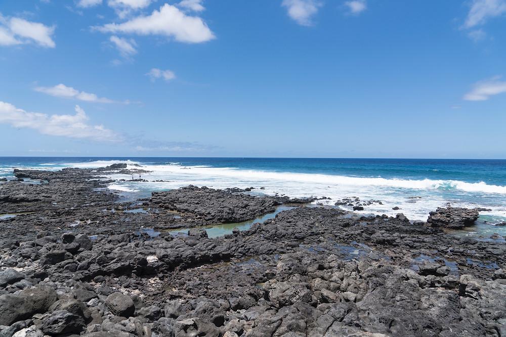 ここがオアフ島の西の先っぽです。なんもないのですが、運が良ければ周囲にハワイアンモンクシール(アザラシ)が寝そべっていることもあるそうです(Photo/Tomohito Ishimaru)