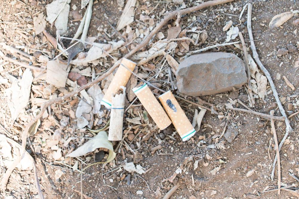 ゴミで圧倒的に多いのはタバコの吸殻。こういう小さなゴミこそ鳥やカメが飲み込むので拾っていきたいという河地さんの言葉が印象的でした