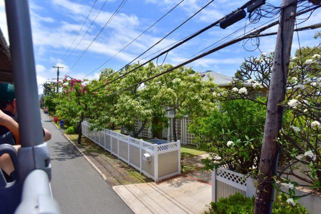 ワイキキを抜けるとお隣のカイムキの街並みへ。バスの上から道に並ぶ一軒家のお庭が丸見え。「この家の門構えは一見ボロいけど中には綺麗なプールがあるんだ〜」的な下世話な発見の連続 (PHOTO/Tomohito Ishimaru)