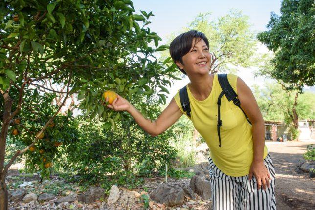 カフマナ・オーガニックファームで植物や果物の説明も(Photo/Tomohito Ishimaru)