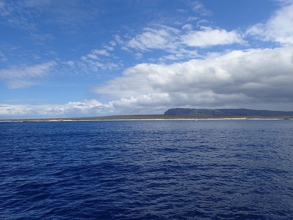 こちらが禁断の島。人影はおろか建物も見えず(Photo/Tomohito Ishimaru)