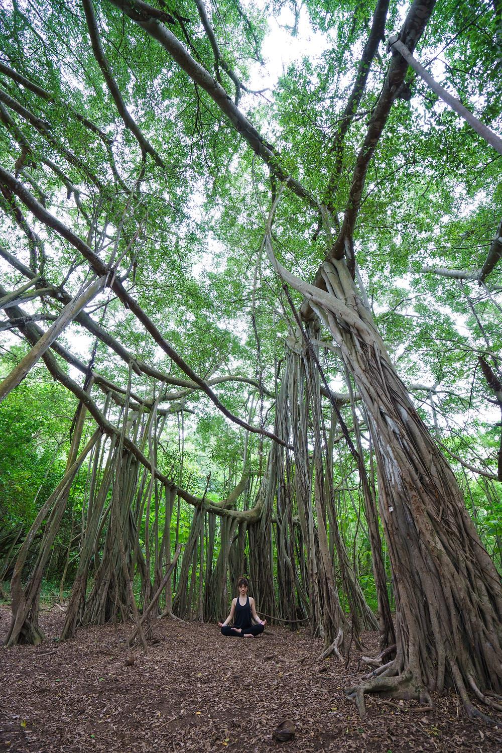 木の下で瞑想ポーズ。菩提樹のブッダみたいに厳かな感じ。だけど撮影した夕方は蚊が多くてモデルさん刺されまくり。撮り終わったよと伝えた途端、モデルさんはダッシュで退散(笑) (Photo/Tomohito Ishimaru)