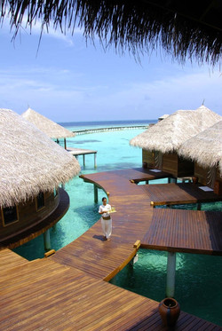 MALDIVES COCOPALM BODU HITHI