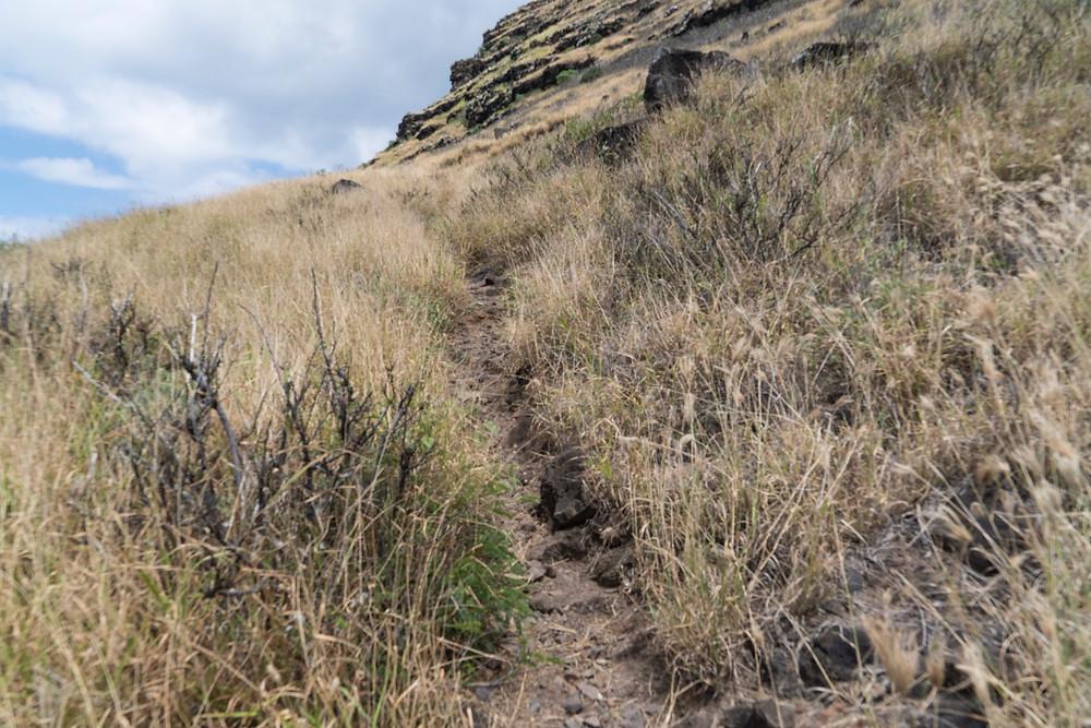 ピルボックスへのトレイルはそれなりな斜面ですが、両手をついて登るようなところはありません (Photo/Tomohito Ishimaru)