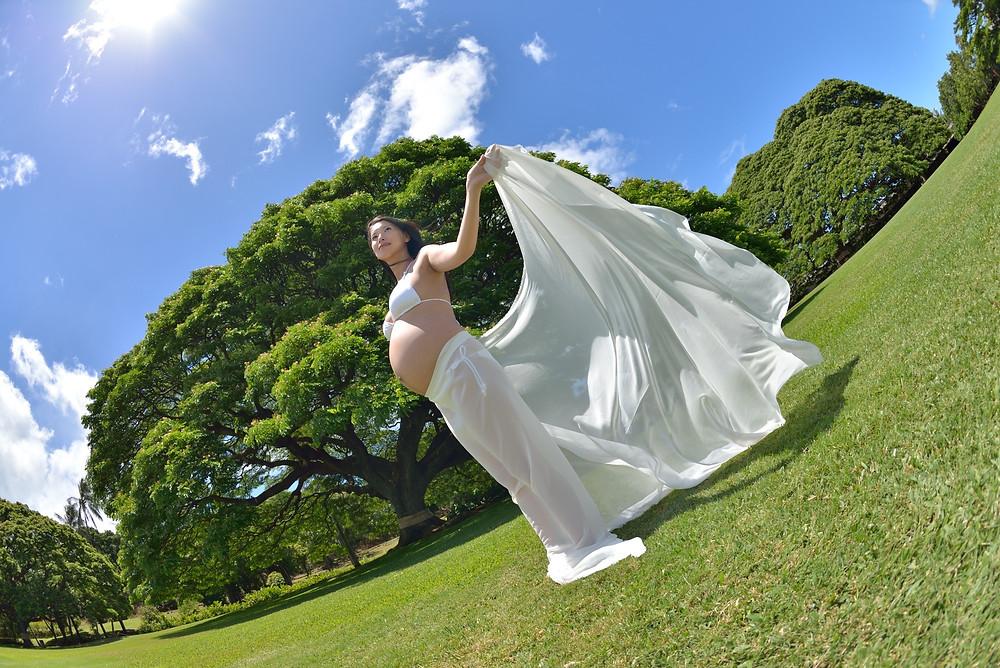 Moanalua Garden (PHOTO/Tomohito Ishimaru)