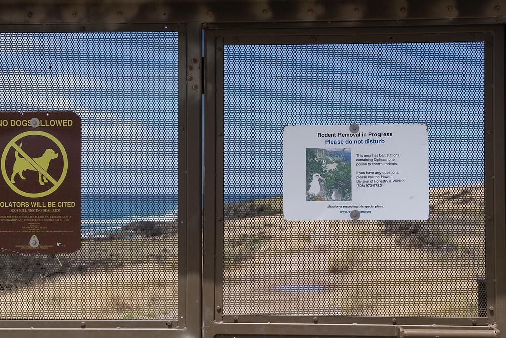 フェンスにはここから先がアホウドリのサンクチュアリ(聖域)であることが説明されています(Photo/Tomohito Ishimaru)