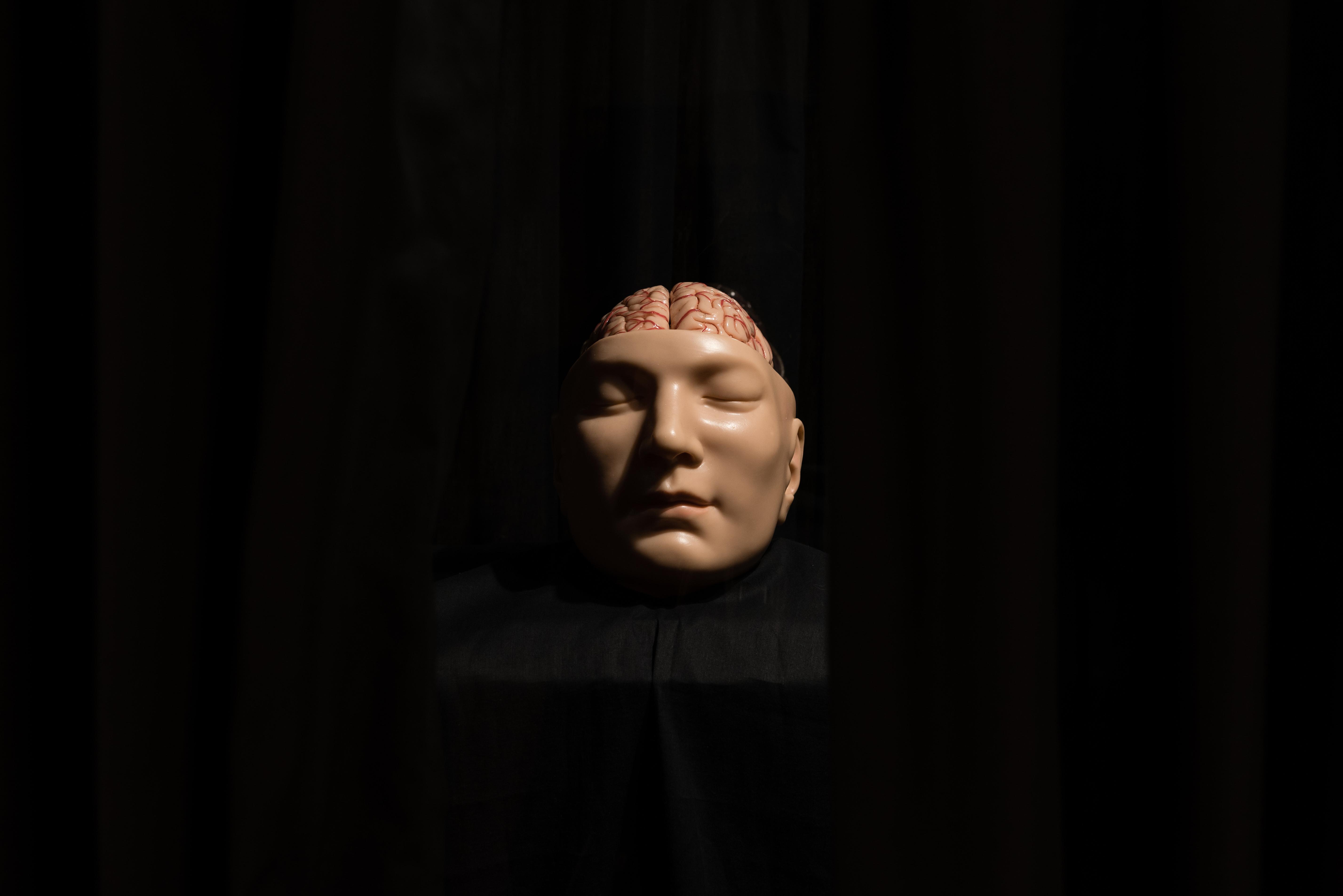 Deathmask_Brain_01