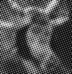 Blind Spot 2010