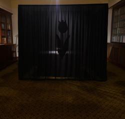 The Black Tulip 2016