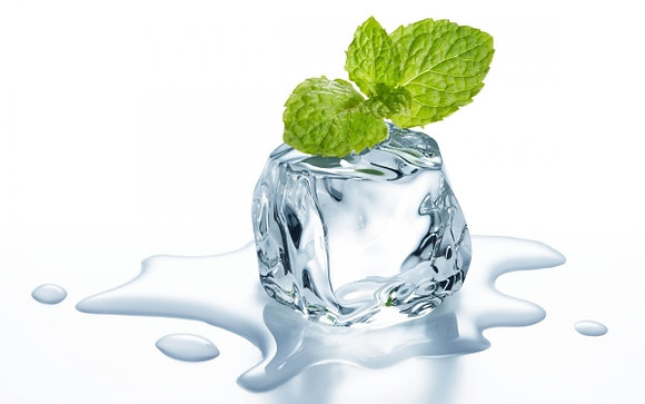 Mint freeze