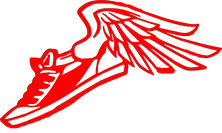 running-shoe-with-wings-hi copy.jpg