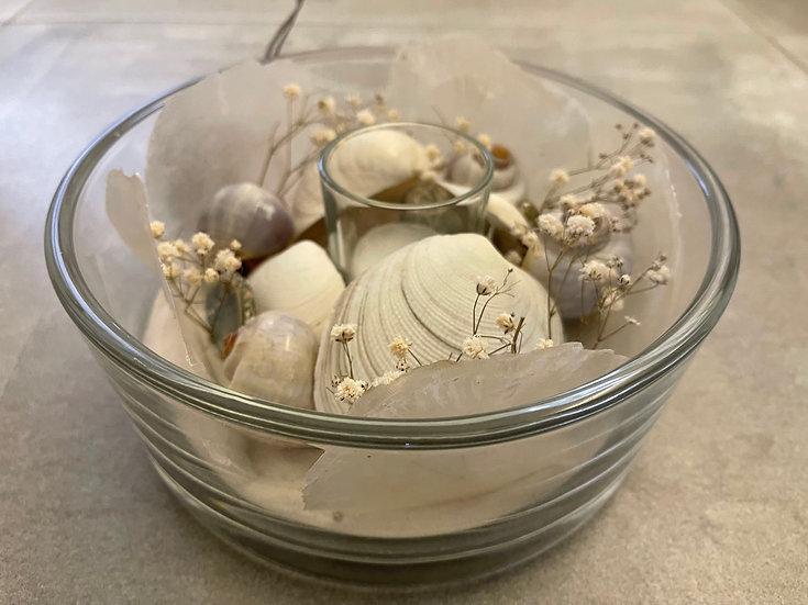 Glasschale mit Muscheln und Schneckenhäusern