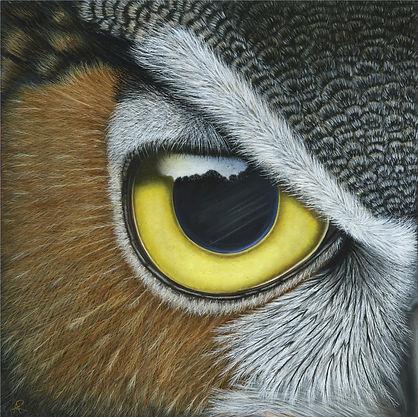 Owl Painting by Ayse Rifat Wildlife Artist