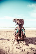 Reisereportage, Travelling Photography