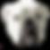 stewart-360-piggy-logo.png