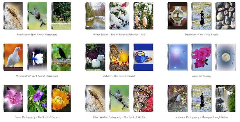 Variety of Spiral Notebooks.JPG