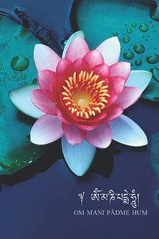Lotus Om Journal - on Amazon.jpg