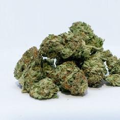 marijuana-2174302_1920.jpg