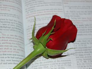 Deceived by God's Word