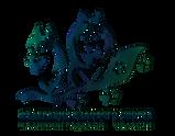 логотип цветной.png