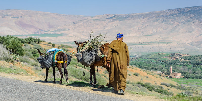 Tizi-Ouazzane, High Atlas Mountains