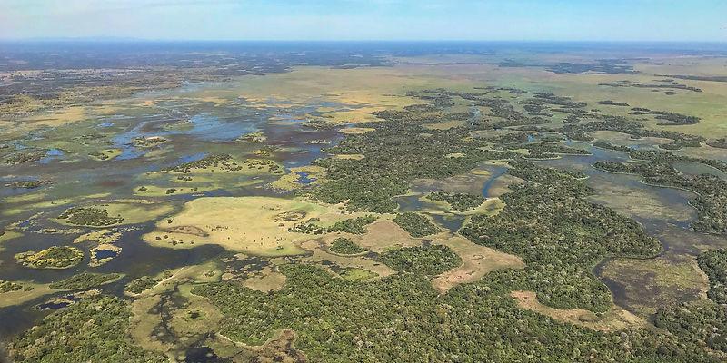 Pantanal aerial view