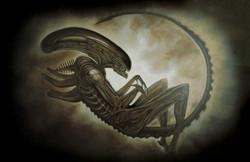 Alien1_web