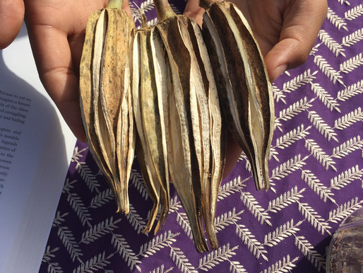 Southern Dried OH-kruhs (Okra) - Ancestral Gift Exchange