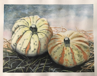 145 Courges multicolores.JPG