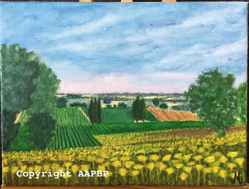 092 Plein champs du Gers