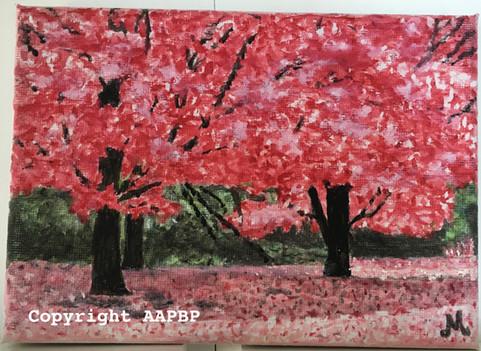 081 forêt rose