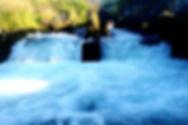 DSC01012_edited_edited_edited.jpg