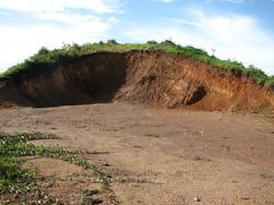 Caribbean Livestock Roads2