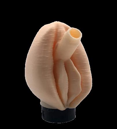 Boquilla 3DA Vagina