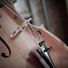 dark cello