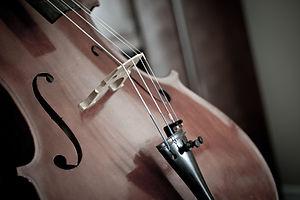 violoncello 1