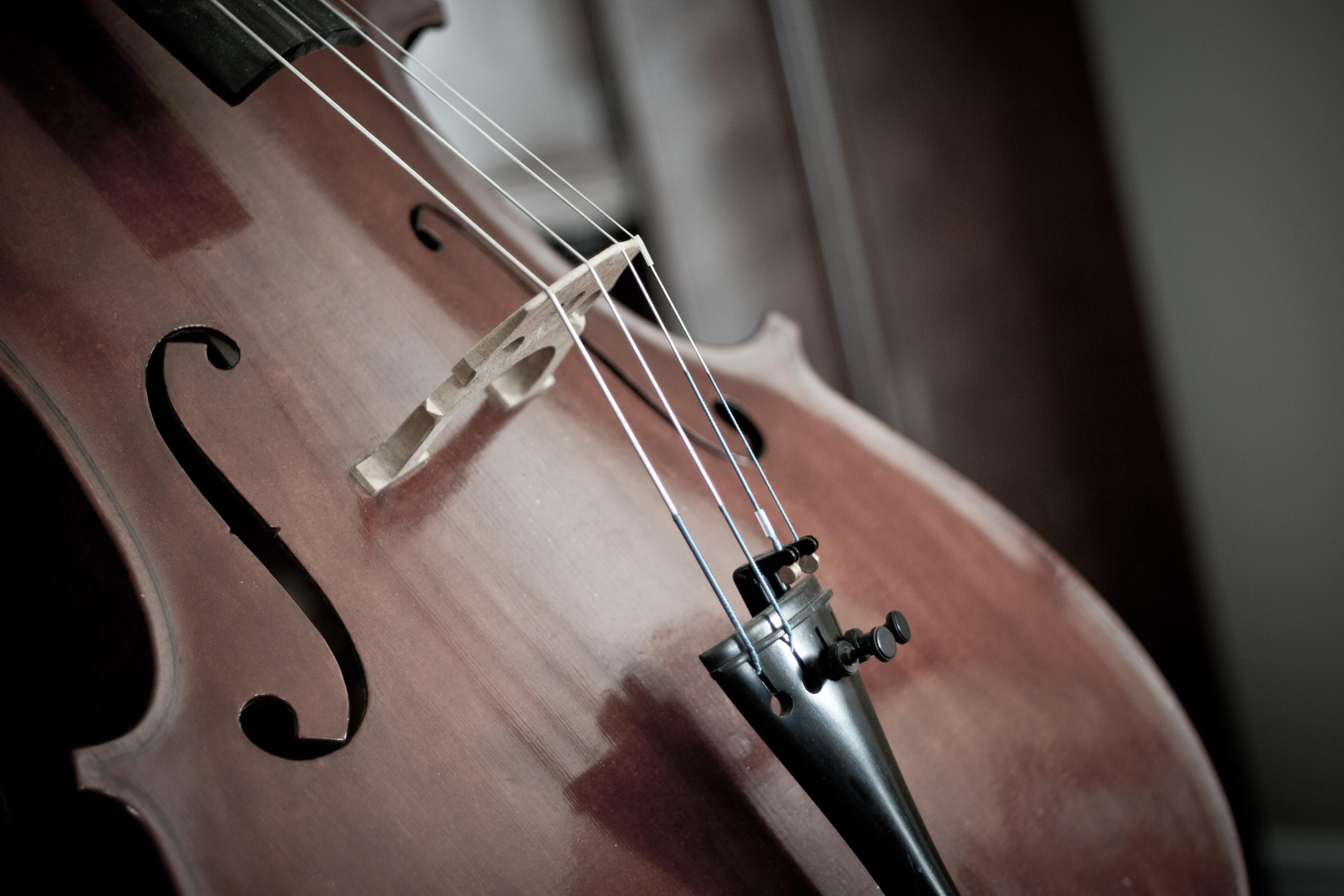 Advanced Intermediate Violin or Cello