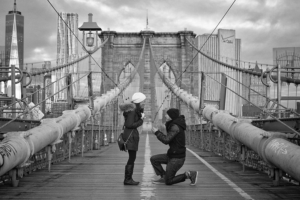 Proposal NYC 001.jpg
