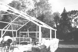 close up of greenhouse work