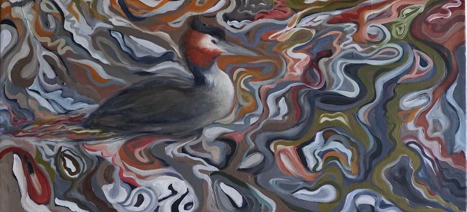 the waterbird