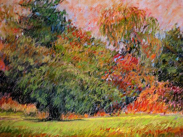 woodland scene- pastel