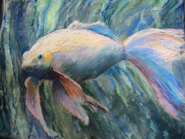 white goldfish-pastel