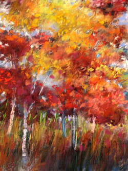 fall-birches-pastel